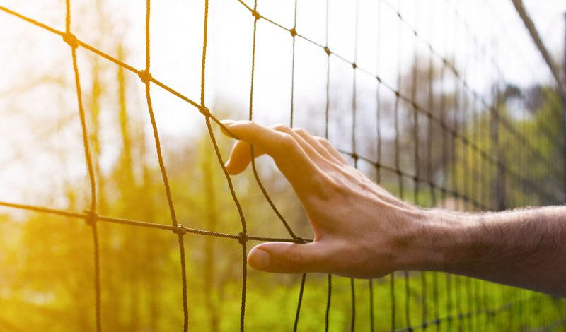Volleyballnetz im Grünen
