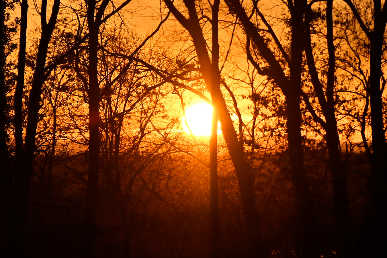 Sonnenuntergang am Sportplatz